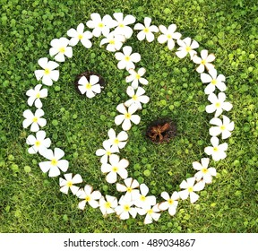 The white temple flower from young to completely bloom until run dry  on green grass,meaning of life concept,Born,Growth,Living and Gone