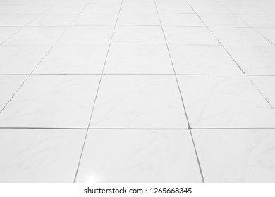 White tile floor with grid line for background.
