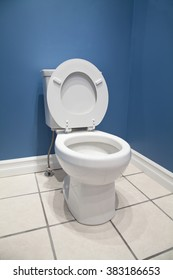 A white toilet in a bathroom with blue walls.