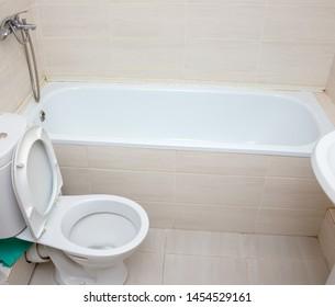 White toilet bowl in the bathroom
