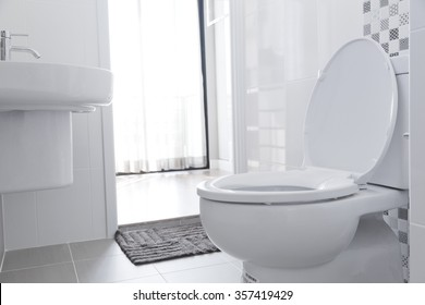 White toilet bowl in the bathroom.