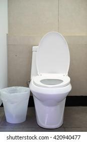 White toilet bowl in a bathroom.