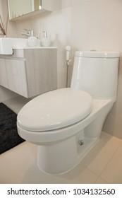 White toilet bowl seat