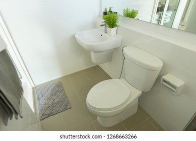 white toilet in modern home, white toilet bowl in cleaning room.