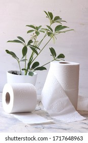 White toilet tissue,paper with green leaves plant on a white background