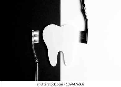 White tooth with toothbrushes on black and white background. Dental health, teeth whitening concept. Flat lay, top view, copy space. Black and white image.