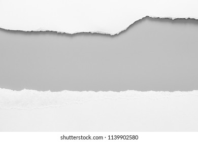 white torn paper on gray background. collection paper rip