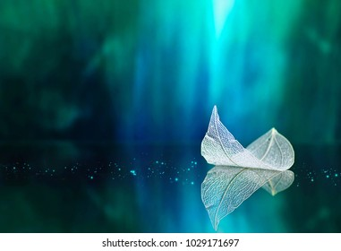 White transparent leaf on mirror surface with reflection on turquoise background macro. Artistic image of ship in water of lake. Dreamy image nature, free space