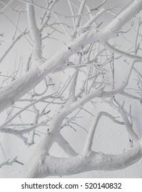 white tree xmas