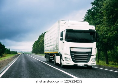 White Truck Or Tractor Unit, Prime Mover, Traction Unit In Motion On Road, Freeway. Asphalt Motorway Highway Against Background Of Forest Landscape. Business Transportation And Trucking Industry