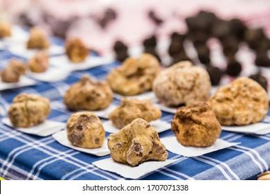white truffles of  Alba, Piedmont region, Italy.