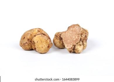 White Truffles Tuber Magnatum Pico