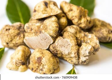 white truffles un white