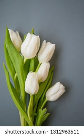 White tulips bouquet spring flowers on grey background still life, spring flowers