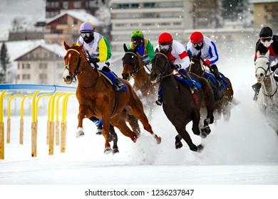 White turf - winter horse race (Swiss)