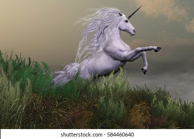 White Unicorn on Mountain 3d illustration - A white unicorn stallion rears up with power and majesty on a hilltop of a mountain range.