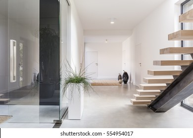 White villa interior wih staircase and decorative houseplant