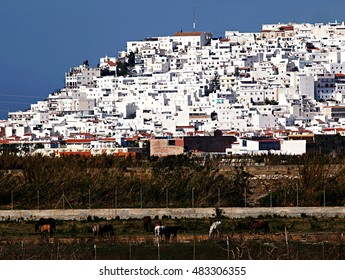 white village south of Spain , Salobreña village