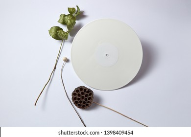 White vinyl audio record and dry branches on a light background with copy space. Retro composition. Flat lay