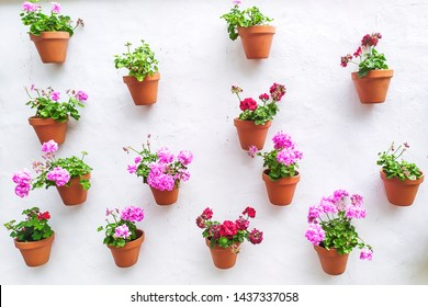 white wall with flower pots