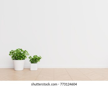 White wall interior design with plants on a floor,3D rendering