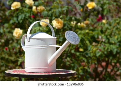 White watering can on round tile mosaic table in a colorful rose garden.