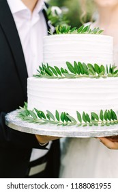 white wedding cake in the hands of the bride and groom, white cake with plants