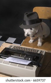 White West Highland Terrier with a man's hat on sitting a chair in front of a typewriter
