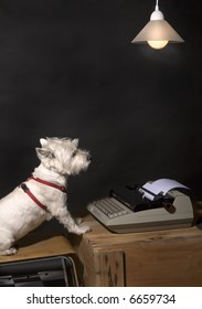 White West Highland Terrier sitting on a chair at a wooden crate with a typewriter on it and a hanging lamp overhead