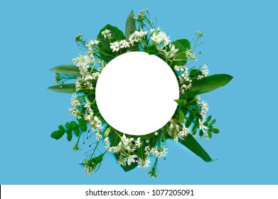 White wild flowers composition round frame at blue background