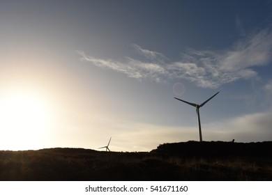 White windmills on heather boglands silhouette to blue sky