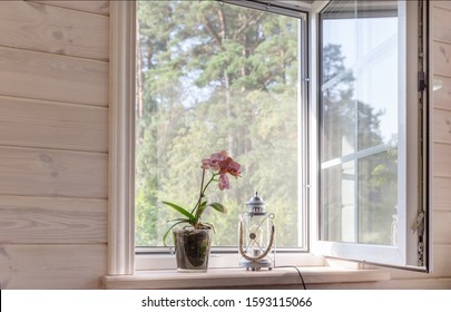 White window with mosquito net in a rustic wooden house overlooking the garden. Phalaenopsis orchid on the windowsill