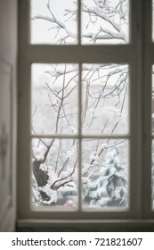 white window view of the branches in the snow, snow covered branches, winter, winter, winter landscape, background