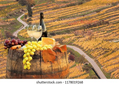White wine with barrel on famous vineyard in Wachau, Spitz, Austria
