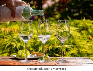 White wine tasting on winery terrace, pouring of cold dry wine in glasses outdoor in sunny day