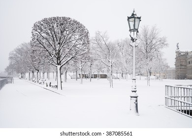white winter landscape in Dresden with a streetlamp