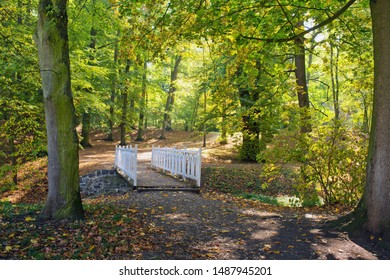 White woden bridge in the park in autumn season.