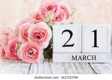 White wood calendar blocks with the date March 21st and pink ranunculus flowers over a wooden table. Selective focus with blurred background.