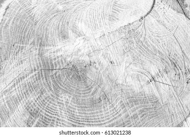 White wood surface background