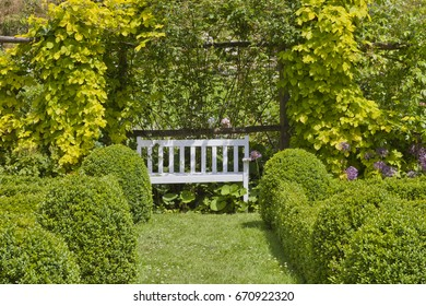 White wooden bench at the end of grass path between trimmed box hedge in a summer garden .