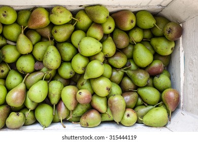 a white wooden crate full of freshly picked, green and healthy pears