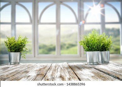 White wooden desk with green small plant and blurred background of window. Summer landscape and sunny day.