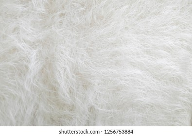 White wool fur texture background. Natural fluffy fur sheep wool skin texture. Real wool fur of sheep, close up, soft focus