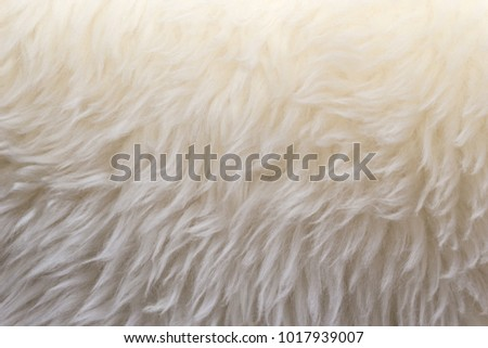 Foto stock a tema White Wool Texture Background Cotton Wool ... fdd95966bbe3