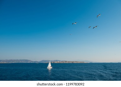 White yacht sailing at blue sea while some seagulls flying above in blue sky