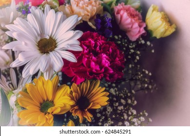 White and yellow daisies with purple flowers