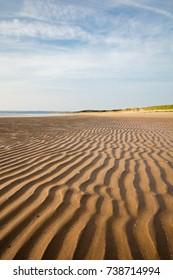Whiteford Burrows, Gower Peninsula, Wales