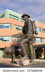 Whitehorse, Yukon / Canada - August 20 2019: The Prospector Statue in Whitehorse, the Yukon, Canada. The sculpture on Main Street depicts a Gold Rush era prospector and his dog.