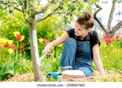 Whitewashing spring trees, protection against insects and pests.A woman paints in white tree trunk with a brush.Whitewashing trees in spring time. Gardening and agriculture, protective