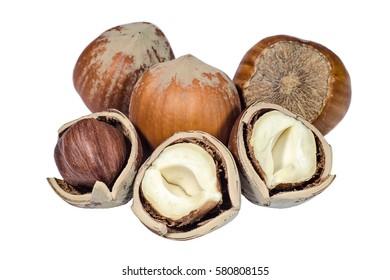 Whole and chopped hazelnuts closeup
